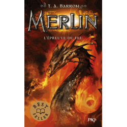 Merlin - Tome 3