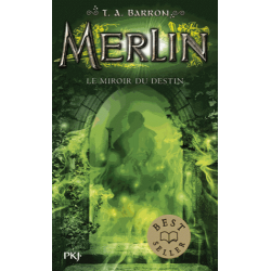 Merlin - Tome 4