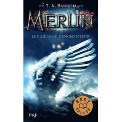 Merlin - Tome 5