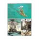 Pirates de Barataria (Les) - Tome 12 - Yucatan