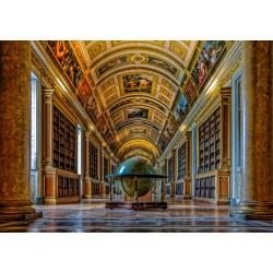 (1500 pièces) - Diana Gallery, Fontainebleau Castle
