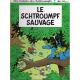Schtroumpfs (Les) - Tome 19 - Le schtroumpf sauvage