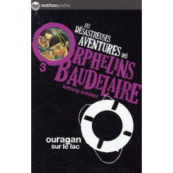 Les désastreuses Aventures des Orphelins Baudelaire - Tome 3