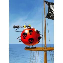 (24 Pièces magnétiques) - François Ruyer: Coccinelle Pirate