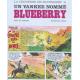 La jeunesse de Blueberry - Tome 2