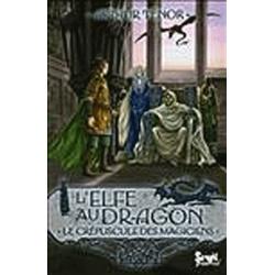 L'elfe au dragon - Tome 6