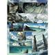 Elfes - Tome 1 - Le Crystal des Elfes bleus